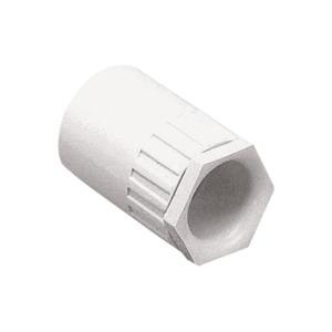 Newlec Round PVC Conduit Female Adaptor 20mm White