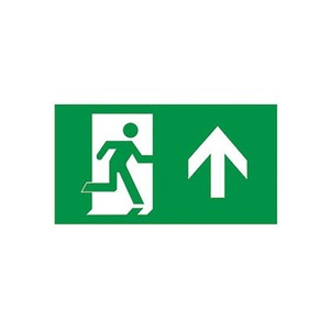 Newlec ISO Legend Arrow Up LED Wall Exit Sign IP20